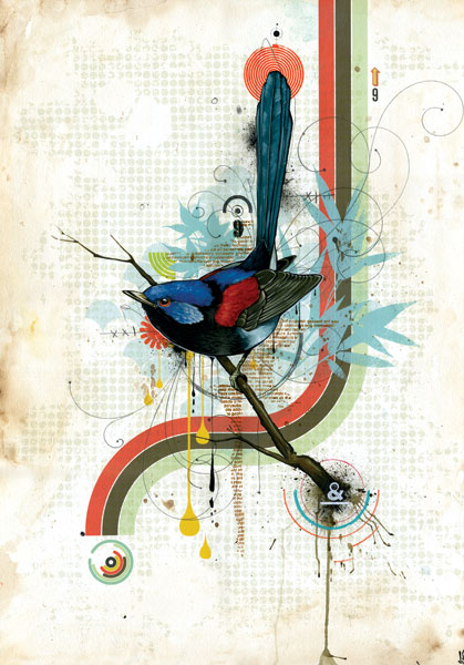 bird_print